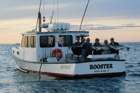 Rooster Fishing, charter fishing, stripers, bluefish, tuna